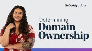 How is Domain Ownership Determined?